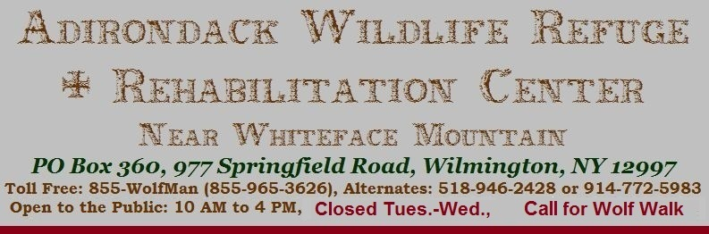 Adirondack Wildlife Refuge & Rehab Center