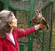 Wendy with Luna the Barred Owl