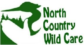 North Country Wild Care