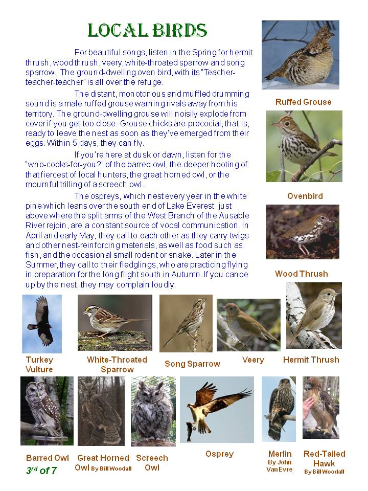 Nature Trail Guide - page 3
