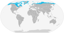 Arctic Fox range map, from Wiki