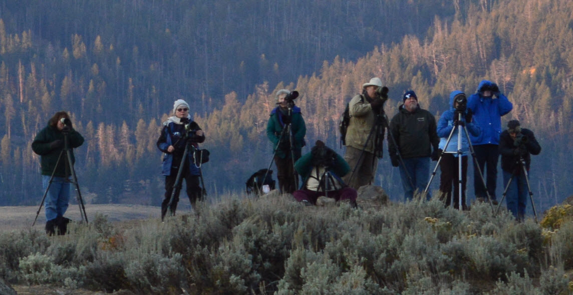 Wolf Spotters in the Lamar Valley Sept. 2012